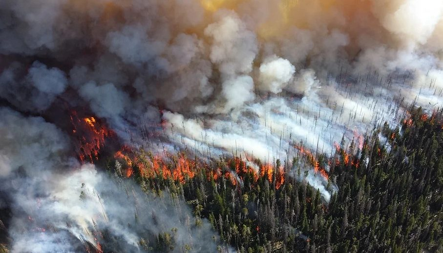Wildfires Left Home Owners Struggling Without Electricity Part II